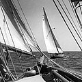 Sailing In Los Angeles Regatta by Underwood Archives