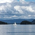 Sailing In The San Juans by Carol Groenen