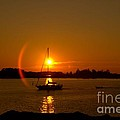 Sailing Into The Sunset by Andrea Kollo