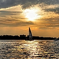 Sailing Into The Sunset by Debra Forand