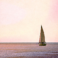 Sailing Into The Sunset by Margie Hurwich