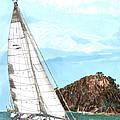 Bay Of Islands Sailing Sailing by Jack Pumphrey