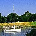 Sailing North On The Sacramento River by Joseph Coulombe