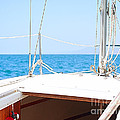 Sailing On A Fine Sunny Day by Artist and Photographer Laura Wrede