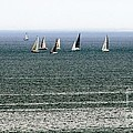 Sailing On Lake Erie by Wendy Gertz