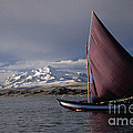 Sailing Boat On Lake Titicaca by James Brunker