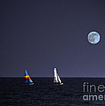 Sailing On Summer Breeze by Lydia Holly