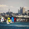 Sailing On The Bay by Donna Blackhall