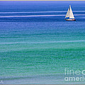 Sailing On Turquoise Blue Water by Mariarosa Rockefeller