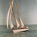 Sailing, One Of The Many Sports by J. Baylor Roberts