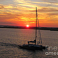 Sailing Past The Sunset by Deborah A Andreas