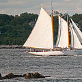 Sailing Portland by Paul Mangold
