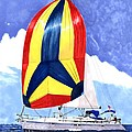 Sailing Primary Colores Spinnaker by Jack Pumphrey