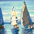 Sailing Regatta At Port Hardy by Teresa Dominici