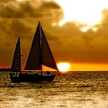 Sailing The Keys by Iconic Images Art Gallery David Pucciarelli