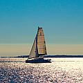 Sailing The Ocean Blue by Debra Forand