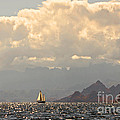 Sailing The Sea Of Cortez by Kandy Hurley