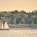 Sailing The Shoreline by Richard Bean
