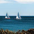 Sailing Watch Hill Ri by Tom Prendergast