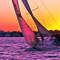 Sails At Dusk by Arthur Sa