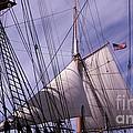 Sails Ready by Susan Garren