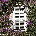 Saint Tropez Window by John Greim