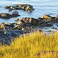 Salem Coastline by Toby McGuire