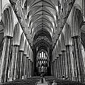 Salisbury Cathedral by Michael Anderson