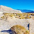 Salt Creek Boardwalk Trail In Death Valley National Park-california  by Ruth Hager