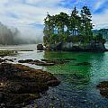 Salt Creek Seastack by Greg Norrell