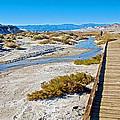 Salt Creek Trail Boardwalk In Death Valley National Park-california  by Ruth Hager