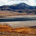 Salt Lake City Antelope Island by Jennifer Craft