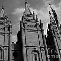 Salt Lake City Lds Temple 3 by Rachel  Butterfield