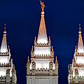 Salt Lake Lds Mormon Temple At Night by Gary Whitton