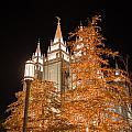 Salt Lake Temple  by Dustin  LeFevre