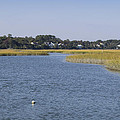Salt Marsh At High Tide 1 by MM Anderson
