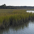 Salt Marsh At High Tide 2 by MM Anderson