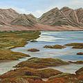 Salt Marsh by Angeles M Pomata