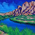 Salt River by Cheryl Fecht