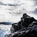 Salt Spray In The Air by Mountain Dreams
