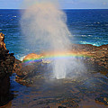 Salt Spray Rainbow by Mike  Dawson