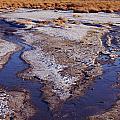 Salt Stream Confluence by Tom Daniel