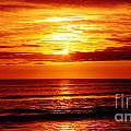 Salty Sunrise by Keri West