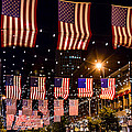 Salute To Old Glory by Teri Virbickis