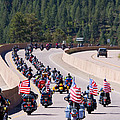 Salute To Veterans Rally by Steve Krull