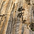 Samaria Gorge National Park, Greece by Science Photo Library