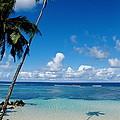 Samoan Paradise by Marc Levine