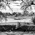 Sampit River View by John Rizzuto
