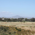 San Diego Desert by John Telfer