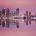 San Diego by Rima Biswas